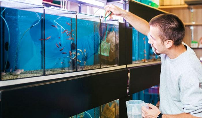aquarium nitrate test kit