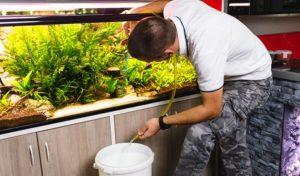 best aquarium water changer