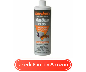 kordon 31256 amquel ammonia detoxifier