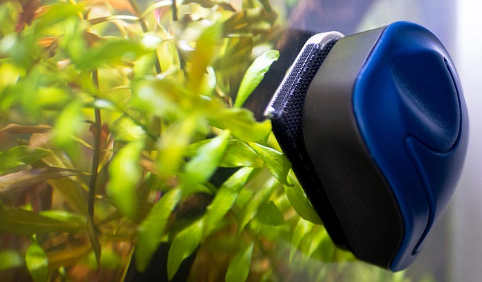 acrylic aquarium magnet cleaner