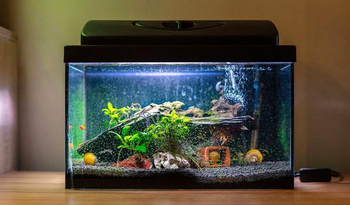 aquarium controller board