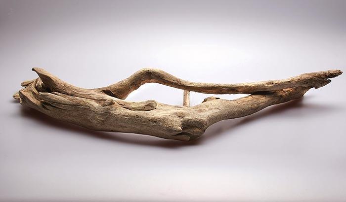 aquarium driftwood branches