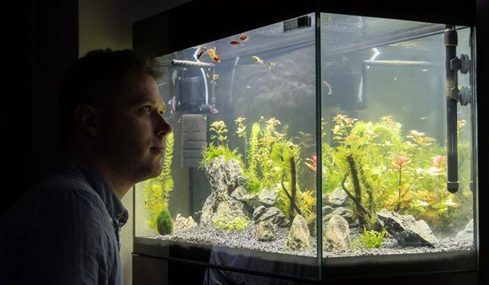 aquarium tap water conditioner