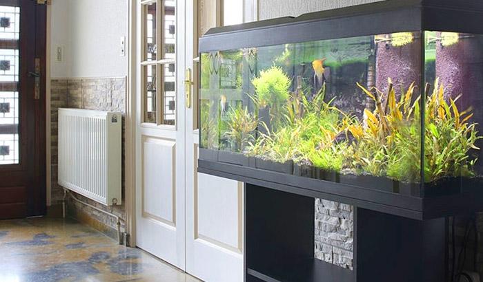 aquatic fundamentals aquarium stands
