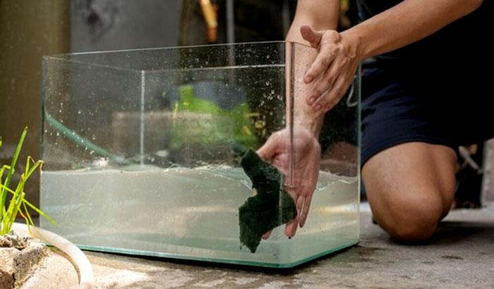 how to fix a leaking aquarium without draining