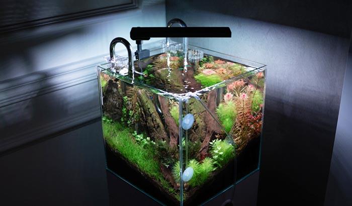 co2 reactor for planted aquarium